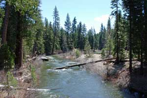 Photo of Silver Fork of the American River, Tahoe National Forest, CA